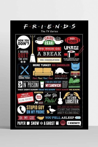 Friends - Maxi Poster Infographic