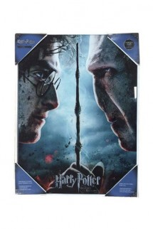 Harry Potter - Póster de Vidrio Harry & Voldemort