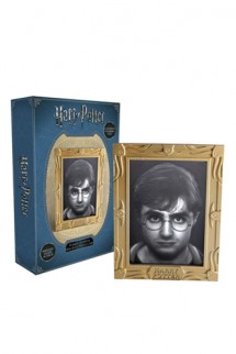 Harry Potter - Holopane 50 Moodlamp: Harry