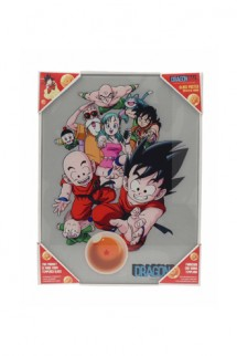 Dragon Ball Z - Poster de vidrio Personajes Dragon Ball