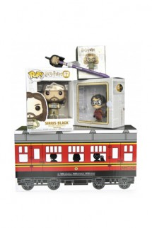 Funko Mystery Box - Harry Potter
