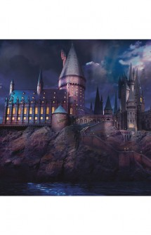 Póster Harry Potter Hogwarts